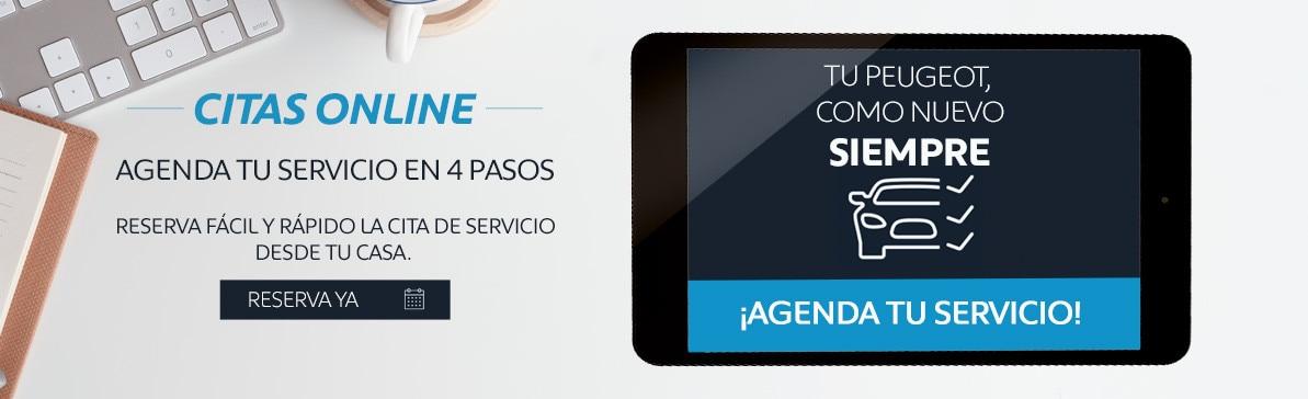 Cita-servicio-online